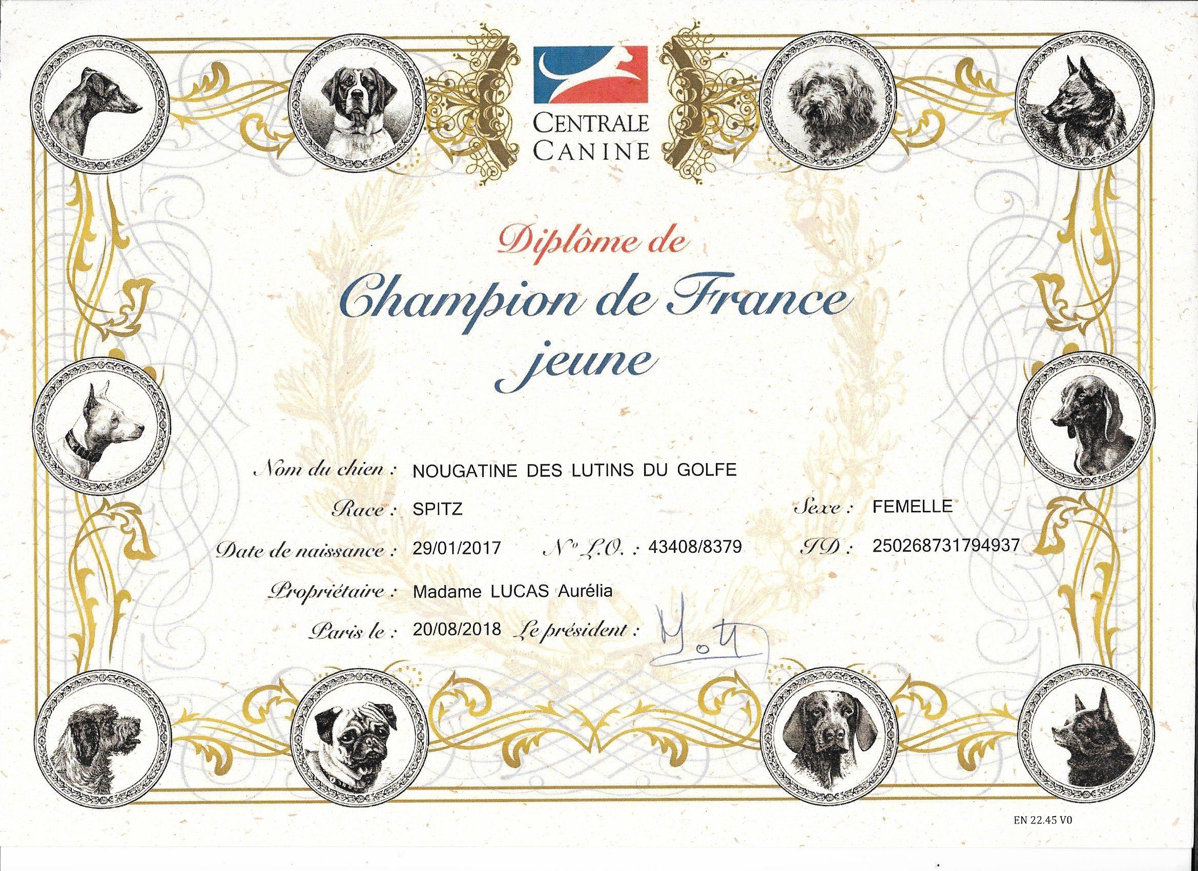 diplôme championne de France jeune - spitz