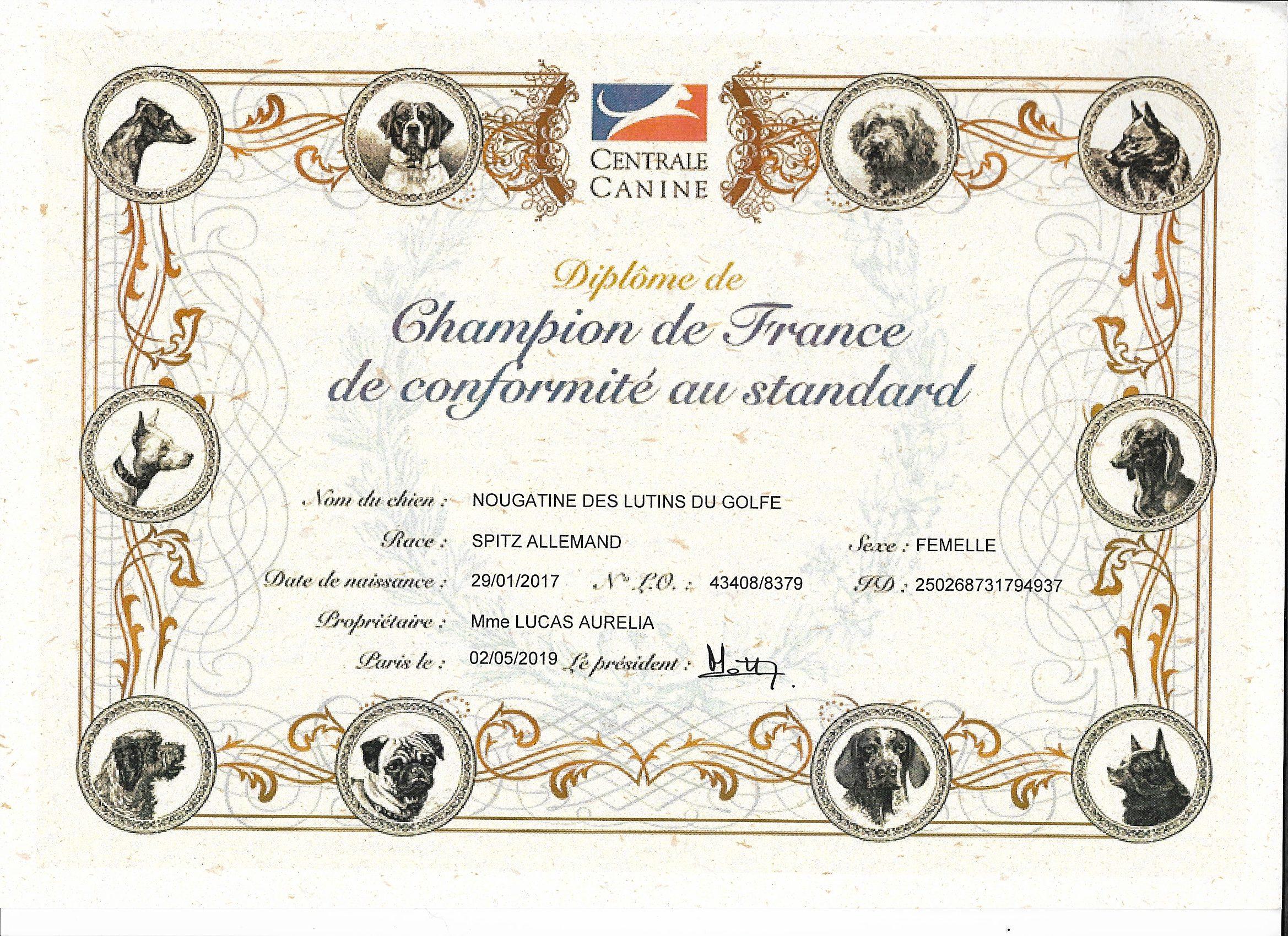 diplôme championne de France - spitz