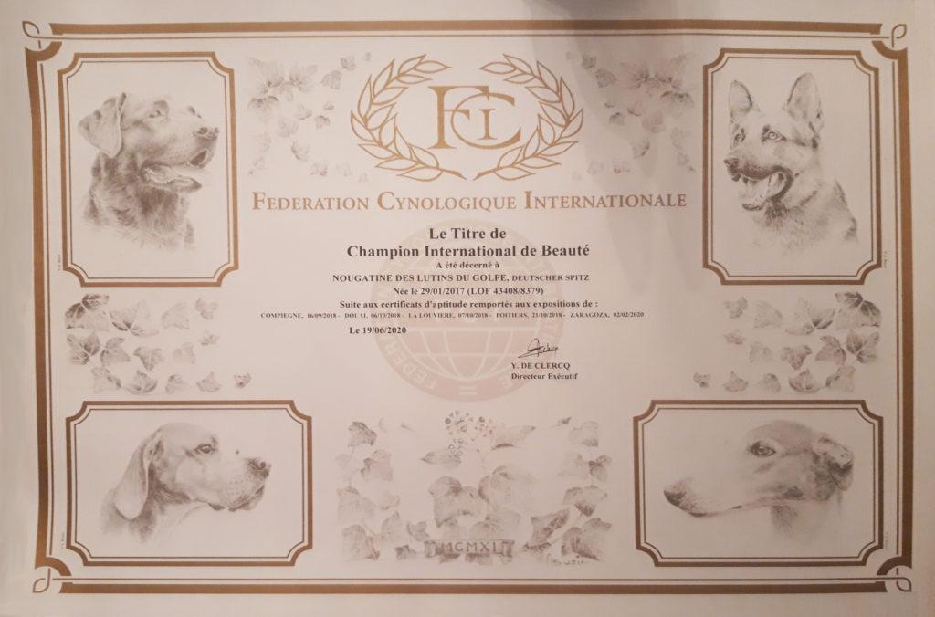 diplôme championne internationale de beauté
